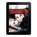 eBook cover for novel Florida