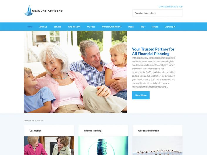 Website for financial advisor